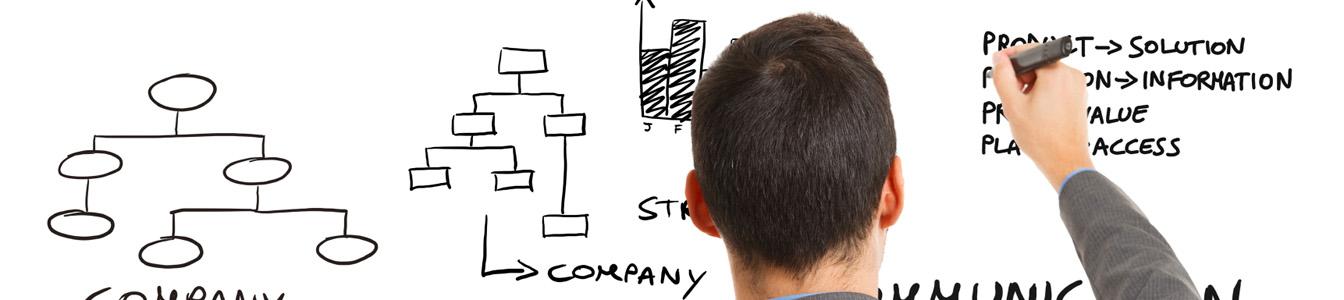 services - management - project management